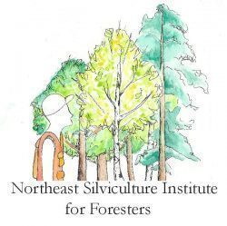Northeast Silviculture Institute for Foresters